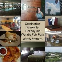 Destination Knoxville Holiday Inn World's Fair Park