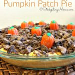 Pumpkin Patch Pie