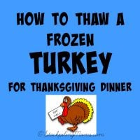 How to Thaw a Frozen Turkey: Part 2