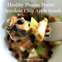 Healthy Peanut Butter Chocolate Chip Apple Snack