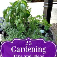 25 Gardening Tips and Ideas