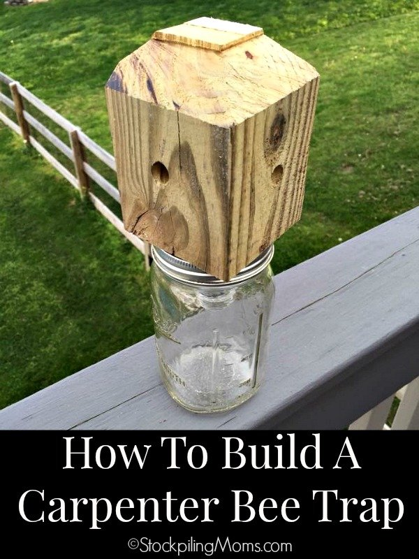 Step By DIY On How To Build A Carpenter Bee Trap