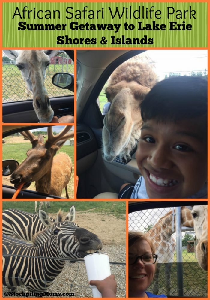 African Safari Wildlife Park - Summer Getaway to Lake Erie Shores & Islands