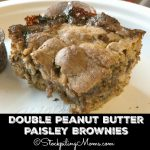 Double Peanut Butter Paisley Brownies