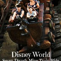 Disney World Seven Dwarfs Mine Train Ride