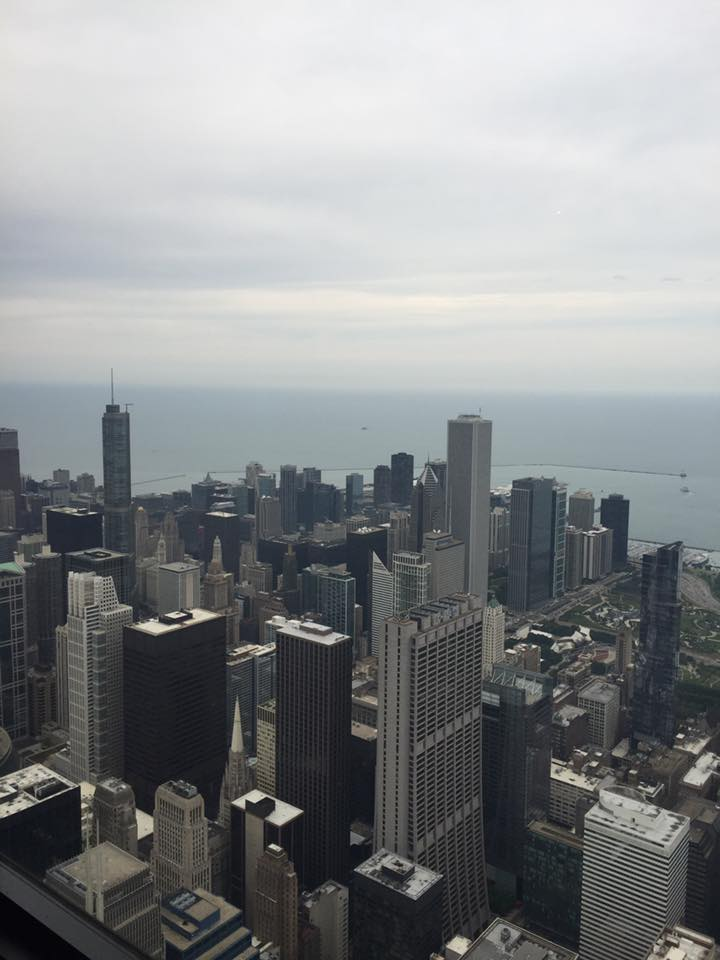 Willis Tower View of Chicago