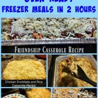 10-oven-ready-freezer-meals-in-2-hours