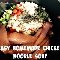 easy-homemade-chicken-noodle-soup