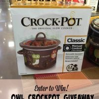 Owl Crockpot Giveaway – CLOSED