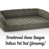 Brentwood Home Runyon Deluxe Pet Bed Giveaway – CLOSED