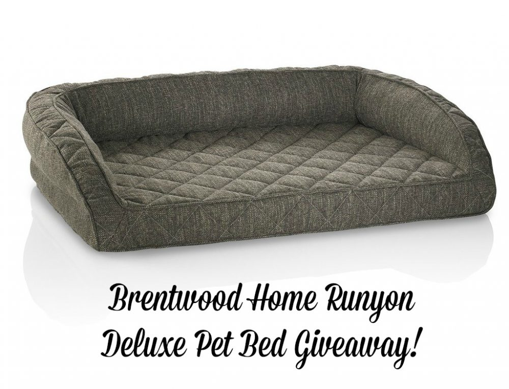 brentwood-home-runyon-deluxe-pet-bed