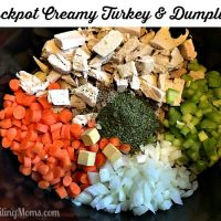 Crockpot Creamy Turkey & Dumplings