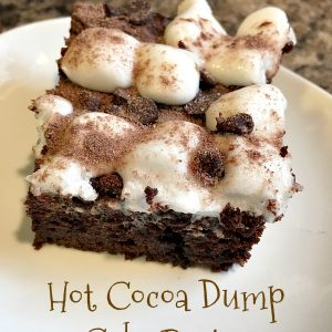 Hot Cocoa Dump Cake Recipe