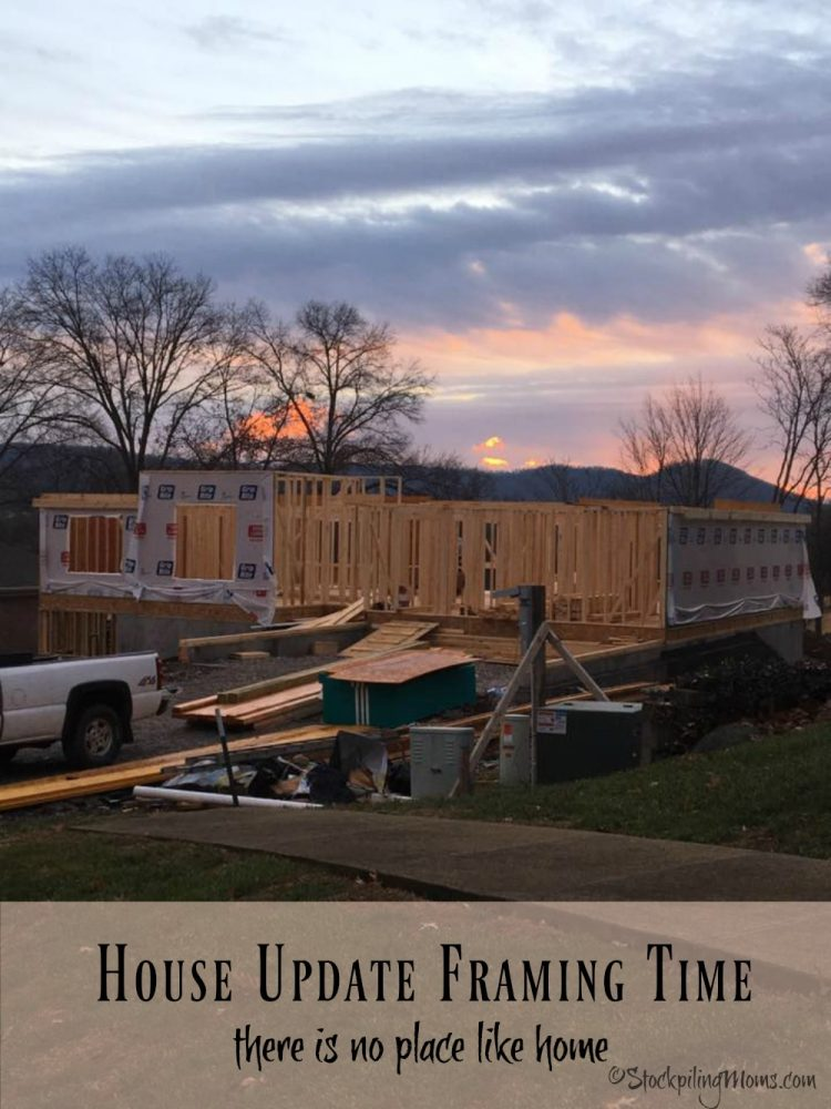 House Update - Framing Time