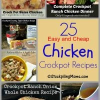 25 Easy and Cheap Chicken Crockpot Recipes
