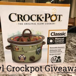 Owl Crockpot Giveaway – Comment and Win – CLOSED