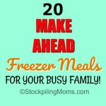 20 Make Ahead Freezer Meals For Your Busy Family