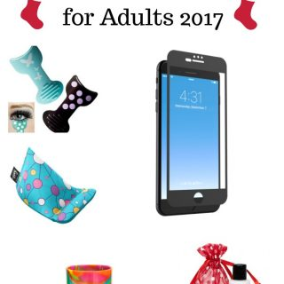 Holiday Stocking Stuffer Gift Guide for Adults 2017