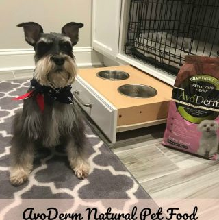 AvoDerm Natural Pet Food is a Great Source of Super-Foods!